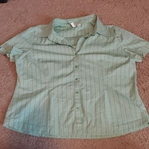 Green with white stripped button down